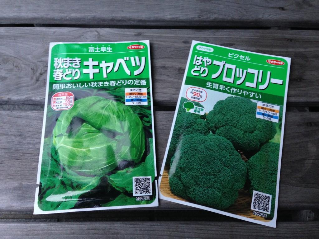 キャベツとブロッコリーの種